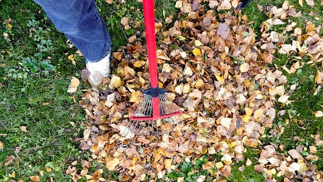Lawn care is crucial for your San Diego home Fall maintenance